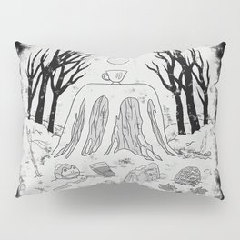 The Unknown Pillow Sham