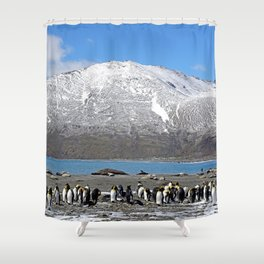 Snowy mountain with King Penguins in the Foreground Shower Curtain