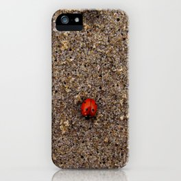 Ladybug at the Beach_2 iPhone Case