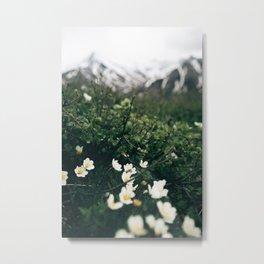 Baby Blooms Metal Print