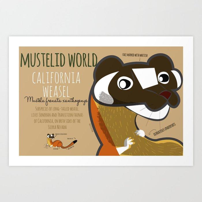 Mustelid Worl: California Weasel (c) 2017 Art Print