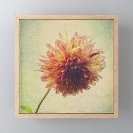 Small Grandness Framed Mini Art Print