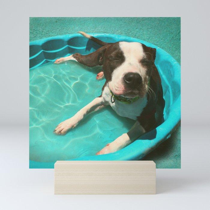 SERENA (shelter pup) Mini Art Print