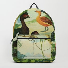 Amazonian birds by Göldi & Emil August, 1859-1917 Belem Brazil Colorful Tropical Birds Illustration Backpack