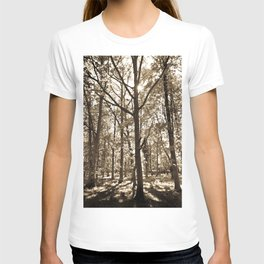 The evening Forest T-shirt