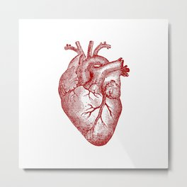 Vintage Heart Anatomy Metal Print