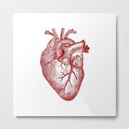 Vintage Heart Anatomy Metal Print