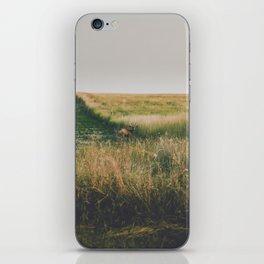 Evening Grazer iPhone Skin