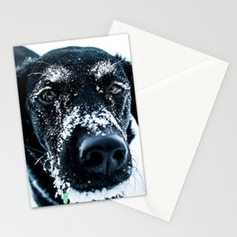 Snow Dog // Cross Country Skiing Black and White Animal Photography Winter Puppy Ice Fur Stationery Cards