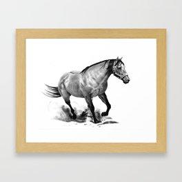 Horse Running, Pencil Drawing, Equine Art Framed Art Print