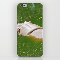 hippo iPhone & iPod Skins featuring Hippo by Doodlevania
