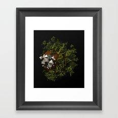 SWWLB Framed Art Print