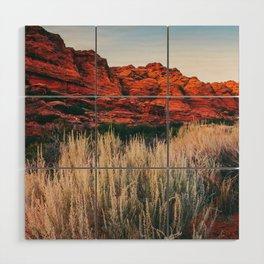 Pampas in the Desert Fine Art Print  • Travel Photography • Wall Art Wood Wall Art