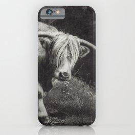 Scottish Highland Cow - Highlander iPhone Case