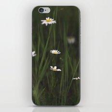 Daisy Days iPhone & iPod Skin