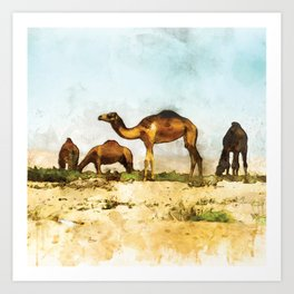 Camels in the Desert Art Print