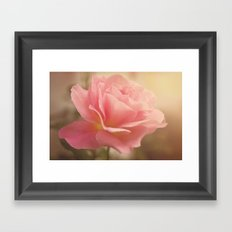 Love is much like a wild rose....... Framed Art Print