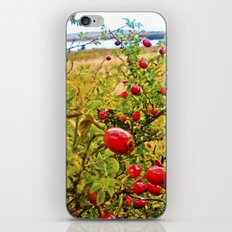Nature red and green. iPhone & iPod Skin