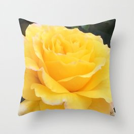 My Yellow Rose Throw Pillow