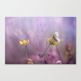 It's only me.... and this little one... Canvas Print