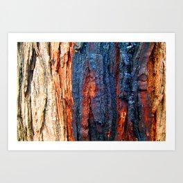 Bark Texture 25 Art Print