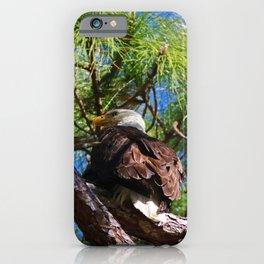 Hatchet Creek Eagle iPhone Case