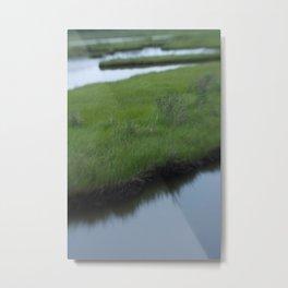 Cattus Island Metal Print