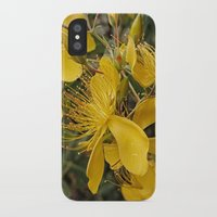 marc johns iPhone & iPod Cases featuring Beautiful St Johns Wort by Wendy Townrow