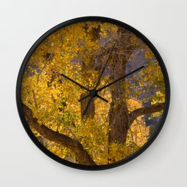 Glowing Cottonwood Wall Clock