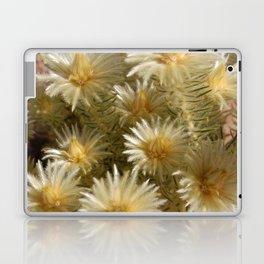 Fynbos Treasures Laptop & iPad Skin