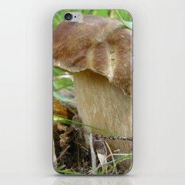 Wild mushroom (Boletus edulis, porcini) iPhone Skin