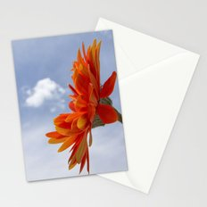 Sweet Delight Stationery Cards