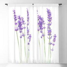 Lavender Blackout Curtain