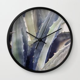 Winter Agave Wall Clock