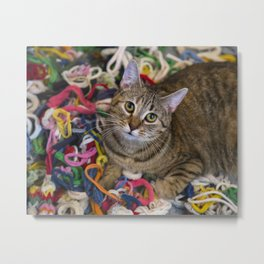 Kitten In Colorful Looms Metal Print
