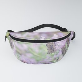 Whirly Gigs Fanny Pack