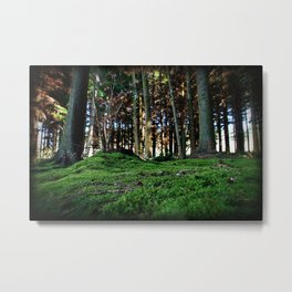 Mossy Forest Metal Print