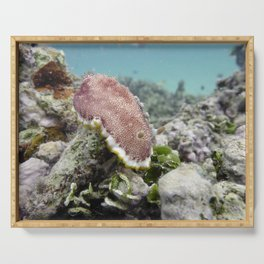 Red Nudibranch Serving Tray