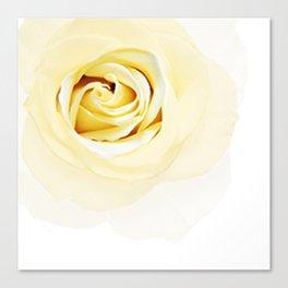 Whtie Rose Canvas Print
