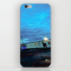 A horse. iPhone & iPod Skin