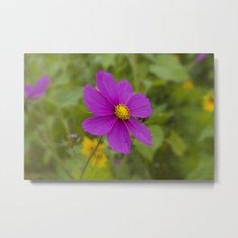 Purple Wildflower Metal Print