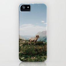 Bighorn Overlook iPhone (5, 5s) Slim Case