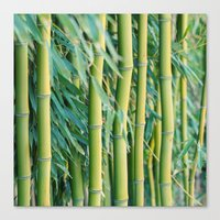 bamboo Canvas Prints featuring Bamboo by Laura Ruth