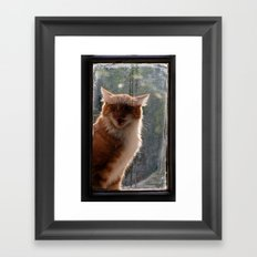 Ginger Cat waiting by the window (CW003) miaouuuuuu Framed Art Print