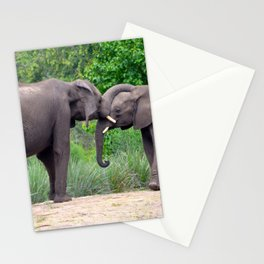African Elephants Interacting Stationery Cards
