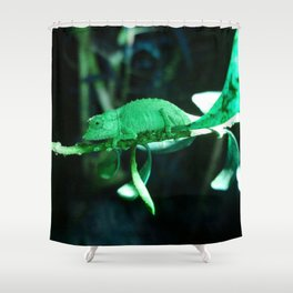 Dwarf Chameleon in Green Shower Curtain