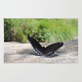 Butterfly on Rock Rug