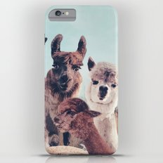HAPPY FAMILY - ALPACA & LLAMA Slim Case iPhone 6s Plus