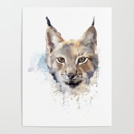 Digital Painting of Watercolor lynx. Poster