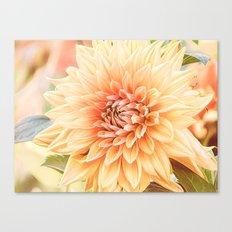 A Dalias Beauty Canvas Print